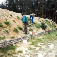 Bild Die Herren pflanzen zur Festigung des Schutzwalls niedrigwachsene Gehölze.