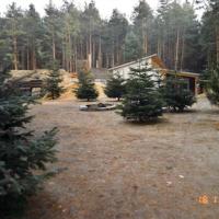 Bild Der Vorplatz der Anlage wurde mit ausgedienten Weihnachtsbäumen dekorativ u.idyllisch hergerichtet.