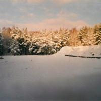 Bild Der Schießplatz im Winter
